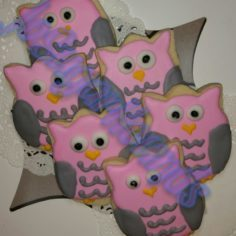 Owls ~ boxed & ready to go